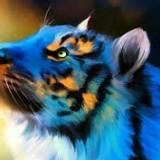 Avatar nie_hejtuj_furry_