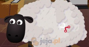Strzyżenie owiec