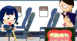 Psotnik w samolocie