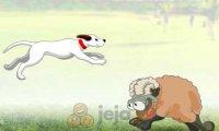 Przeskocz owieczki