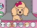 Salon piękności dla zwierząt
