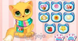 Ubranie dla kotka
