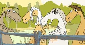Rozśpiewane konie