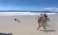 To uczucie, kiedy pies gra w piłkę lepiej od Ciebie