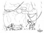 Tarzan vs. czarownik
