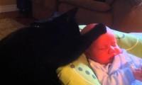 Kot usypiający dziecko
