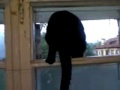 Kot przyłapany na szczekaniu