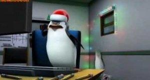 Pingwiny z Madagaskaru podsumowują internet