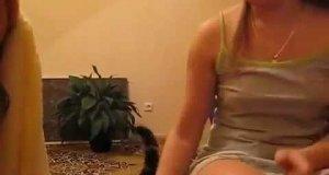 Kot domaga się głaskania