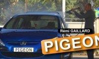 Gołąb (Remi Gallard)
