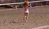 Czarny koń w bikini