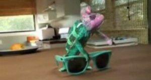 Kameleon i okulary