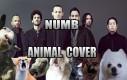 Zwierzęce Linkin Park