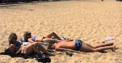 Plażowy ślimak