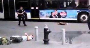 Gdy pies zaatakuje policjanta w USA...