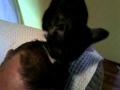 Kot zadba o Twoją higienę