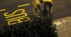 Mistrzowie w malowaniu znaków na ulicy