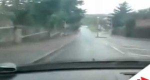 Zwariowany kierowca