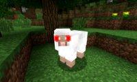 Owca Terrorystka