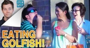 Złota rybka - idealna przekąska