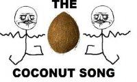 Piosenka o kokosach