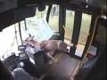 Jelonek uwięziony w autobusie