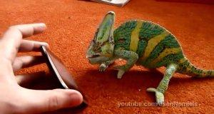Krzyk kameleona