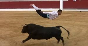 Groźne byki