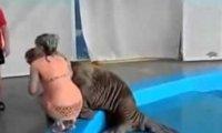 Słodka fota z lwem morskim