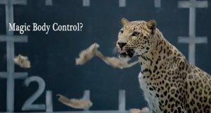Odpowiedź Jaguara na reklamę Mercedesa