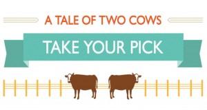 Opowieść o dwóch krowach