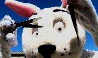 Świąteczny króliczek obcina włosy przypadkowym dziewczynom