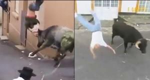 Człowiek kontra byk