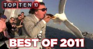 Najzabawniejsze filmiki 2011 roku