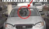 Problemy grubego kierowcy