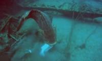 Podwodny złośnik