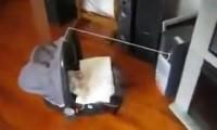 Kołyska napędzana CD Romem