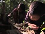 Dzieci polujące na tarantule