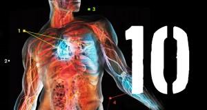 10 faktów, których nie wiesz o swoim ciele