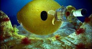 Podwodna butelka