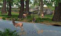 Polowanie na zwierzynę 3D