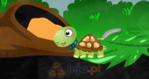 Żniwa żółwi