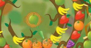 Owocowy zawijak
