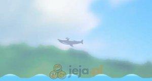 Skoki Delfinów 2