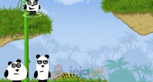 3 pandy HTML5