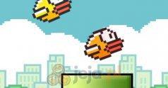 Squishy Bird
