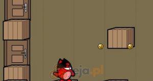 Uciekająca wiewiórka