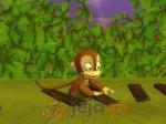 Przygody małpy