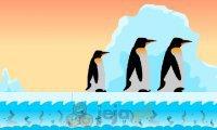 Najmniejszy pingwin