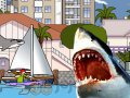 Rekin w Sydney